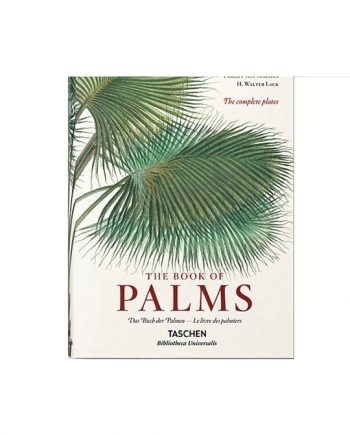 c53c33 f32c0654a774441a95e622411af09a76 mv2 d 4724 4724 s 4 2 1 350x435 - The book of palms - XL