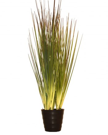 plantegrønn 350x435 - Grass potted grey-green
