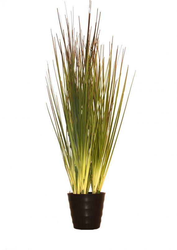 plantegrønn 570x806 - Grass potted grey-green