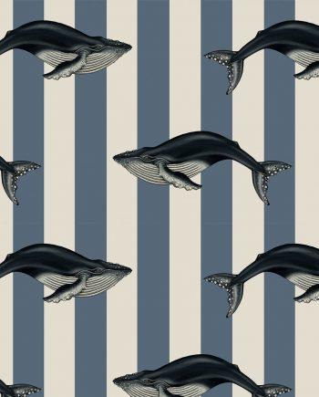 baleana 350x435 - Baleana