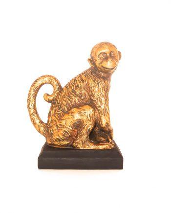 IMG 2958 350x435 - Ape i gull