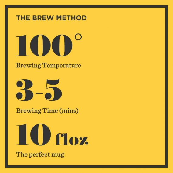 EB Bag Instructions 570x570 - Brew Tea - English Breakfast