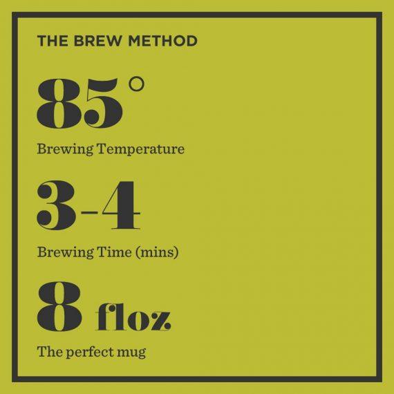 GT Bag Instructions 570x570 - Brew Tea - Green tea