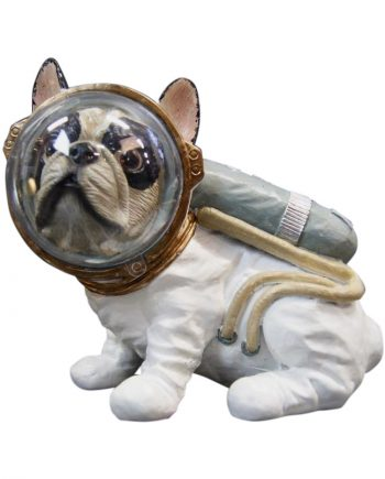NY9318100 1 350x435 - Space dog