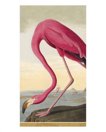 """ng13120 350x435 - Servietter - """"Audubon birds"""""""