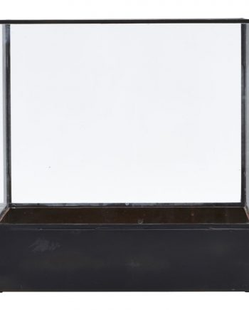 "web1200 white pm0381 01 350x435 - Display box ""plant"""