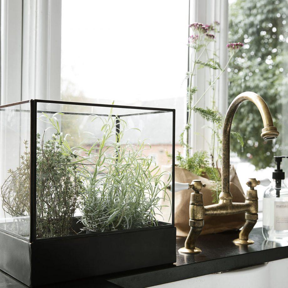 "web1200 white pm0381 02 920x920 - Display box ""plant"""