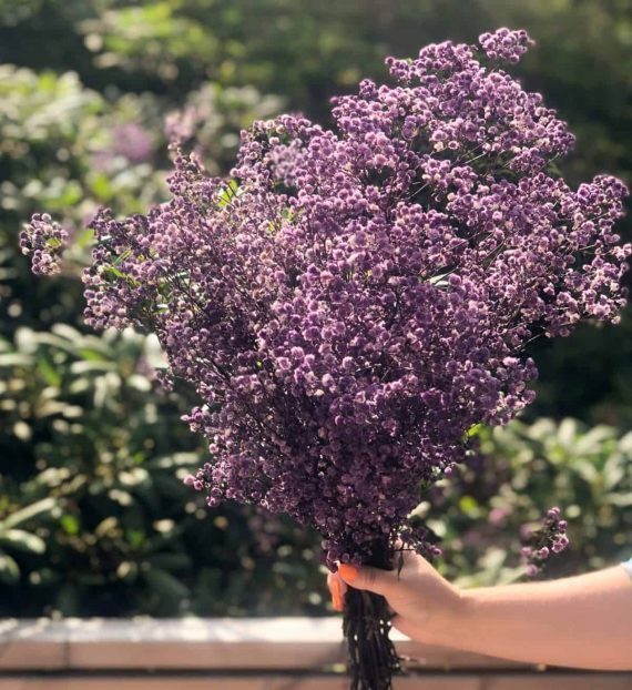 "IMG 4431 e1564389470941 570x622 - Brudeslør ""Shades of purple"""