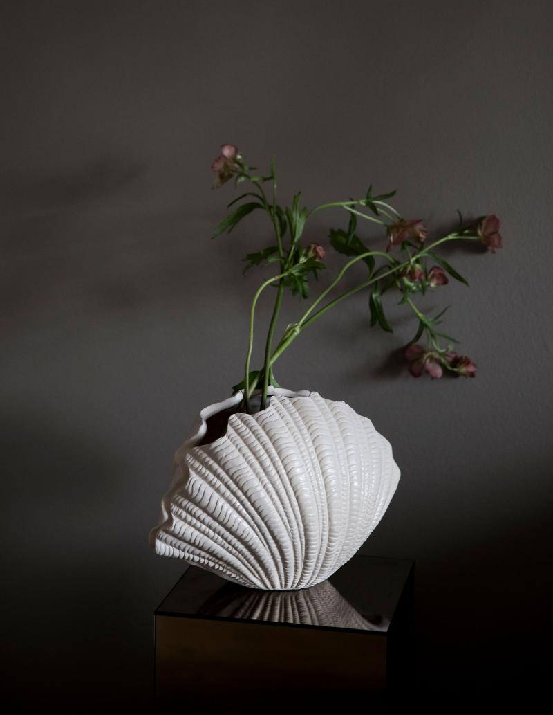10611343 - Vase - Shell