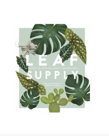 Skjermbilde 2021 06 02 kl. 11.12.00 350x435 - Leaf supply