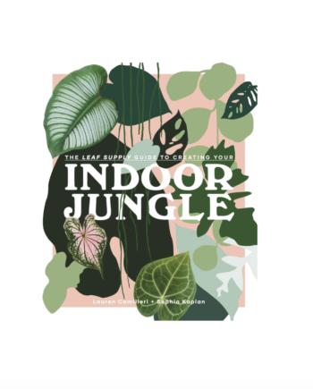 Skjermbilde 2021 06 02 kl. 11.14.25 350x435 - Indoor Jungle