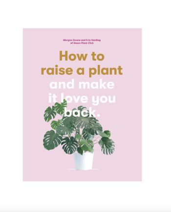 Skjermbilde 2021 09 20 kl. 13.30.31 350x435 - How to raise a plant - and make it love you back!
